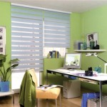 ofis için zebra modeli