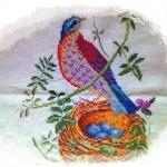 kuş motifi
