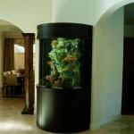 siyah modern akvaryum tasarımı
