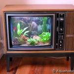 televizyon akvaryum modeli