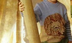 Yuvarlak Yaka Arslan Desenli Erkek Çocuk Kazak Modeli
