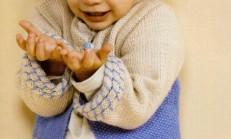 Fil Desenli Mavi Erkek Çocuk Hırka Modeli