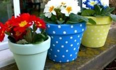 Bahar Geldi Saksılarımızı Boyayalım