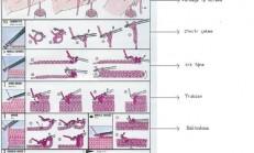 Torba Lastik Ajur Modeli Buzlu Cam Örneği Teknikleri Nasıl Yapılır
