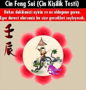 Cin Feng Sui Testi