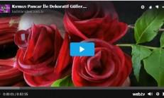 Kırmızı Pancar İle Dekoratif Güller Yapabilirsiniz..