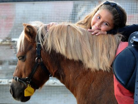 maya ve atı