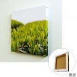 küçük çim yeşil canvas